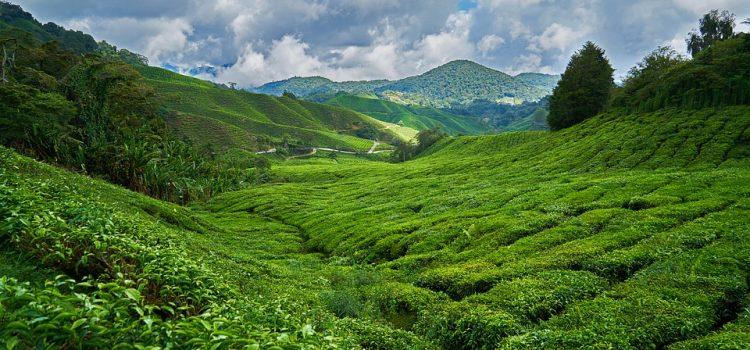 La Malaisie, Une destination de rêve.