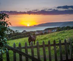 Vacances 2020 : destination les côtes Normandes
