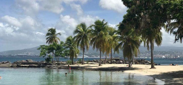 Destination les antilles : la Martinique, l'île aux fleurs